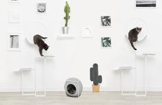 No more ugly pet furniture in your home! VEGAS and HOOP are new minimalist cat furniture pieces that won't spoil your home decor. These are a minimal cat habitat (HOOP), and a graphic, cactus-shaped scratcher (VEGAS). Cat Tree Designs, Cheap Cat Beds, Cat Habitat, Cat Tree House, Fancy Cats, Pet Furniture, Furniture Ideas, Pet Beds, Paris