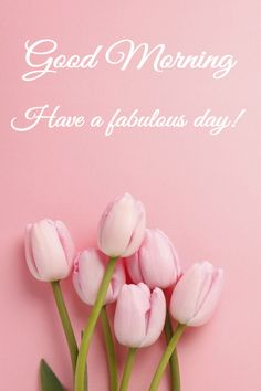 996 best greetings good wishes images on pinterest birthday find this pin and more on greetings good wishes by eman majali m4hsunfo