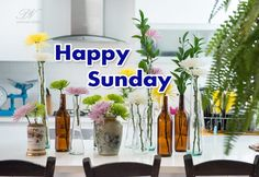 Happy Sunday – Day For Wallowing Sunday Wishes Images, Sunday Morning Wishes, Happy Sunday, Weekend Quotes, Sunday Quotes, Sunday Motivation, Popular Quotes, Good Morning Images, E Cards