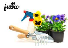 Mês de julho   O que fazer no seu jardim este mês    Como já vem sendo habitual, saiba quais os cuidados a ter este mês com as flores, plantas, hortas, árvores e arbustos. #oleomac #oleomacportugal #OM #julho #jardim #plantas #árvores #arbustos #hortas #flores #estilodevida #cuidados