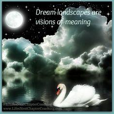 Swan in moonlight