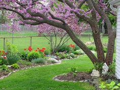 Sara's Spring Garden