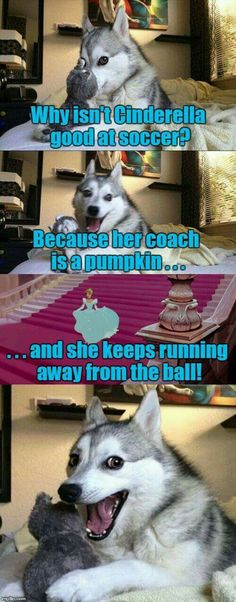 New funny memes humor cant stop laughing hilarious dogs 56 Ideas Humour Disney, Funny Disney Jokes, Funny Animal Jokes, Dog Jokes, Puns Jokes, Corny Jokes, Memes Humor, Crazy Funny Memes, Really Funny Memes