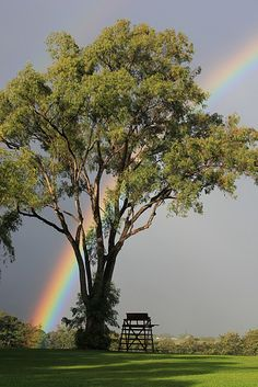 For me a rainbow is a special gift from nature, whenever I encounter one I stop everything and watch in wonder.