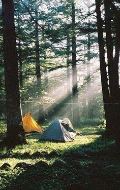 ✨pinterest: kristaoezer✨ #WildernessCamping