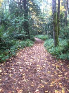 Francis King Park, Victoria BC Vancouver Island Canada