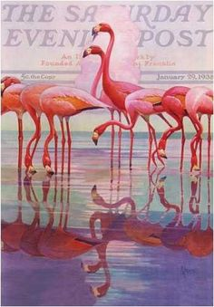 Its a classic memory from days gone by, the Flamingo Cover that decorated the Saturday Evening Post can now be part of your outdoor decor, with this fabulous artwork reproduced on a house flag. Description from bannersandflags.guidestobuy.com. I searched for this on bing.com/images