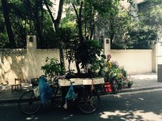 Flower shop near French concession, Shanghai