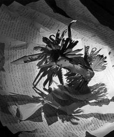 """Emile Savitry.Nature morte: """"Couteau surréaliste"""", Paris 1947 Projet d'illustration du livre de Marcel Jean et Arpad Mezei : """"Les Chants de Maldoror"""", essai sur Lautréamont et son œuvre, Editions Nizet, Paris, 1947. Emile Savitry (1903-1967) commence sa carrière en 1930. © Emile Savitry"""