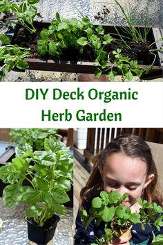 DIY Deck Organic Herb Garden, a fun way to teach your kids to be eco kids!