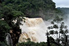 Zongo Falls, DRC
