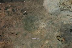 Archaeologists in Spain have made a number of discoveries inside an ancient cave…