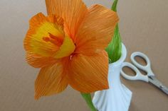 Patterns for Crepe Paper Flowers | eHow
