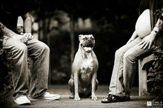 I would love to incorporate the dogs into our maternity pictures <3