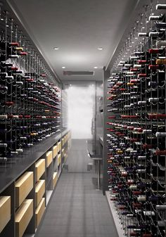 Cable Wine System Wine Cellar by Papro Consulting 36a