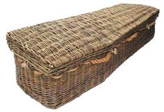 eco coffin-willow