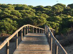 """Punta Umbria znaczy """"zacieniony punkt"""" - sosnowy pachnący park oddziela hotele od przepięknej plaży Punta Umbria, Garden Bridge, Stairs, Outdoor Structures, Park, Home Decor, Dots, Stairway, Decoration Home"""