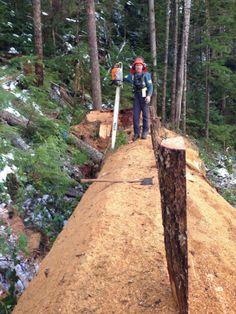 Old school logging