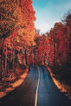 🎃🍊🍁 All the fall feels! Cute Fall Wallpaper, Fall Background, Autumn Scenes, Autumn Aesthetic, Autumn Cozy, All Nature, Autumn Photography, Fall Pictures, Aesthetic Backgrounds
