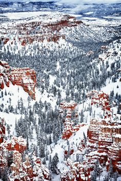 Winter Wonder - Bryce Canyon National Park, Utah *We didn't get to visit here but hope to on our next trip out west, only without the snow* pa Arches Nationalpark, Yellowstone Nationalpark, North Cascades, Great Smoky Mountains, Death Valley, Mammoth Cave, Beautiful World, Beautiful Places, Voyager C'est Vivre