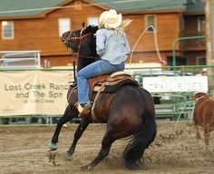 Oh yeah/ I would love to get into breakaway roping!