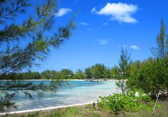 August 7, 2016 Coco Bay, Green Turtle Cay, Abaco, Bahamas. Save Save