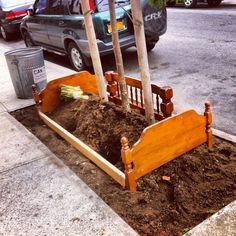 A tree bed in Bushwick. Pinned from wyckoffheights.org