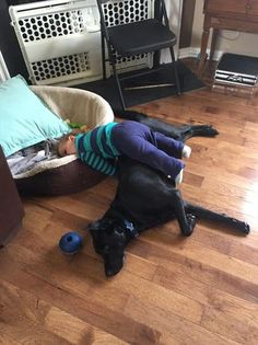 Kids Sleeping Position Dog Bed So cute! Cute Funny Animals, Funny Animal Pictures, Dog Pictures, Funny Dogs, Dogs And Kids, Animals For Kids, Animals And Pets, Baby Animals, Kids Falling
