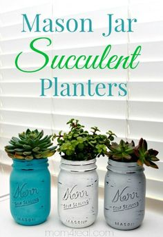 Mason-Jar-Succulent-Planters