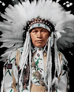 Wolfe Teeth of Nakoda Nation. The Nakoda (also known as Stoney or Îyârhe Nakoda) are an indigenous people in Western Canada.