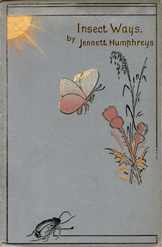 .Insects Ways.  I love this simple illustration.  It would make a cute embroidery project.
