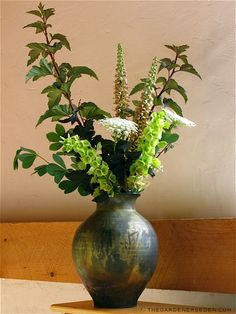 In addition to its striking presence in the garden, Physocarpus opulifolius 'Diablo's' leaves and branches add sophisticated beauty to floral arrangements. When combined with citrus-colored flowers —such as the Bells of Ireland shown below in a vase by raku artist Richard Foye— 'Diablo' is a real knock-out. The sturdy stems also offer excellent support for more delicate flora, and a lovely vertical compliment to blowzy hydrangea blossoms — Hydrangea paniculata 'Limelight' is especially…