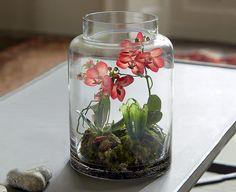 Realistic silk orchid vivarium for study Orchid Terrarium, Terrarium Diy, Organic Gardening, Gardening Tips, Plant In Glass, Silk Orchids, Vivarium, Houseplants, Beautiful Gardens