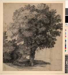 Claude Lorrain Tree and dance; group of figures dancing (?) at the base of a large tree Black chalk, with grey wash; on buff paper