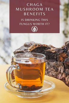 Chaga mushroom tea benefits are plentiful. Let's learn about its other benefits. Healthy Smoothies, Smoothie Recipes, Healthy Detox, Healthy Drinks, Healthy Life, Healthy Recipes, Fruit Drinks, Yummy Drinks, Beverages