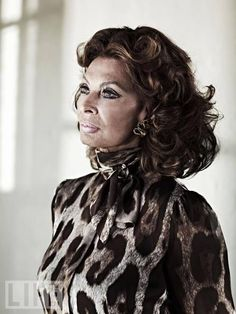 Actress Sophia Loren is photographed for Life on April 2011 in Los Angeles, California. (Photo by Jeff Vespa/Contour by Getty Images) Sophia Loren Images, Celebs, Celebrities, Role Models, Jon Snow, September, April 25, Actresses, Catherine Deneuve