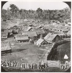 How NZ's colonial government misused laws to crush non-violent dissent at Parihaka - NZ Herald Once Were Warriors, Chatham Islands, Maori People, Home History, Maori Designs, Hills And Valleys, Maori Art, South Island, New Zealand