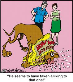 Today on Marmaduke - Comics by Brad Anderson Dog Cartoons, Watch Cartoons, Cartoon Dog, Funny Dogs, Funny Animals, Dog Comics, Laughter The Best Medicine, Dog Jokes, Great Dane Dogs