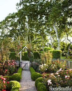 For a garden outside of her Hamptons cottage, designer Podge Bune chose traditional roses and hedges.
