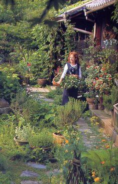 Reminds me of a secret garden