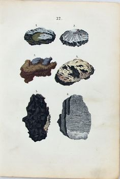 1880S ANTIQUE GERMAN PRINT - ROCKS - MINERALS via Grandpa's Market. Click on the image to see more!