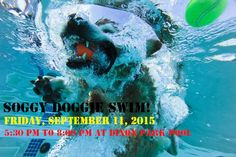 Doggie pool on pinterest dog pools dog houses and dogs for Dixon park swimming pool fredericksburg va