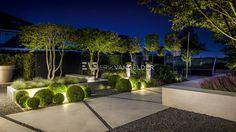 Moderne villatuin Middelburg. Bijzondere groene tuin met moderne verlichting en bijzondere karakteristieke bomen en groenblijvende beplanting. #Betonlook pad