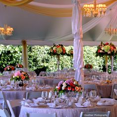 Slightly dressy but pretty flowers, chandeliers, (we don't need the swaggy ceiling fabric) - love the table tops...