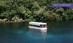 A glass-bottomed boat glides through the San Marcos Springs and affords views of songbirds above and turtles or fish below Only In Texas, Glass Bottom Boat, Turtle Swimming, Amazing Sunsets, Boat Tours, Open Up, Beautiful Beaches, Spring Break, San Antonio