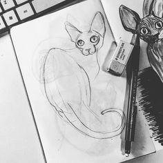 Work in progress  #sphynx #sphynxkitten #sphynxlove #sphynxlife #sphynxclub #sphynxtattoo #sphynxtagram #sphynxismyworld #catdrawing #catillustration #illustrator #catsofworld #brush #brushpen #illustration #illustrations #drawings #drawingsofinstagram #drawsomething #sketchbook #sketchbooks #sketch #sketchbookskool #moleskine #moleskineart #artsy #wrinklycat #catillustration #arts_mag #art_we_inspire #pencil