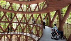 Sparling treetop walkway Denmark
