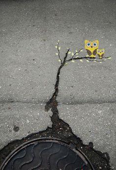 art in the cracks of the street - Imgur