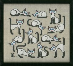 katte komsammen