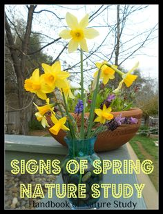Handbook of Nature Study: Outdoor Hour Challenge-Signs of Spring and printable